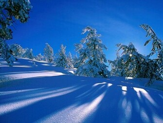 Winter Scene   Christmas Wallpaper 2735675