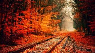 Fall Wallpaper HD High Resolution Images Stock Photos