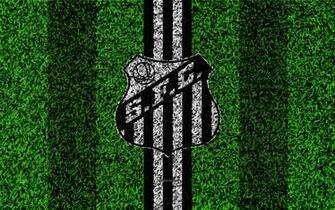 Download wallpapers Santos FC 4k football lawn logo Brazilian