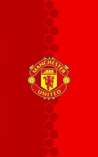 Manchester United Logo For Blackberry   Http 564x902 11954 KB