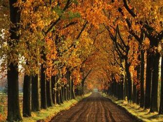 Autumn Desktop Wallpaper Related Keywords amp Suggestions