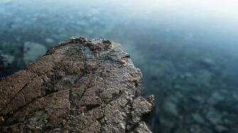 Stone depth of field wallpaper HQ WALLPAPER   20374
