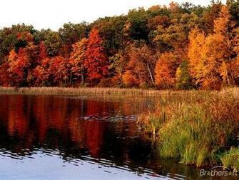 desktop wallpaper fall foliage   wwwwallpapers in hdcom