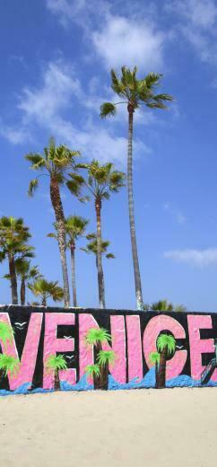 GoAltaCA Venice Beach California Adventures Venice beach