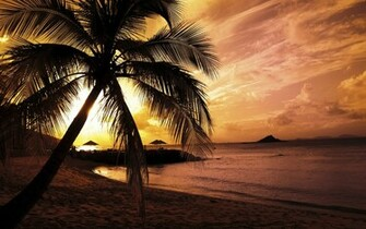 Nature Summer Sunset Beach Wallpaper 2359 Wallpaper Cool