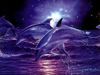 3d Digital Dolphins hd Wallpaper High Quality WallpapersWallpaper