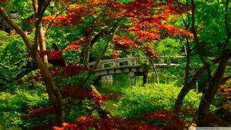 Download Japanese Garden Kyoto Wallpaper 1920x1080