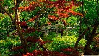 Download Japanese Garden Kyoto Wallpaper 1920x1080