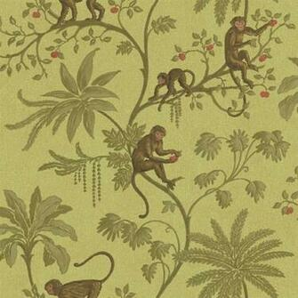 Jungle of Monkeys Wallpaper   Discount Wallcovering