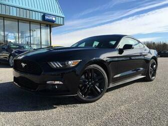 Related wallpapers from 2015 Ford Mustang EcoBoost Black