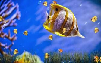 Animated WallpaperAnimated Wallpaper Windows 73D Animated Wallpapers