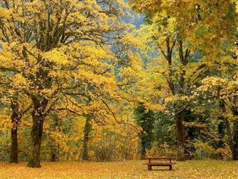 Beautiful Autumn Scenery Wallpapers Beautiful Autumn Scenery