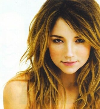 Gallery Beauty Wallpapers Haley Bennett Wallpaper Actress