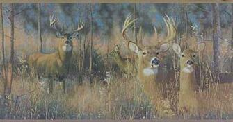 Deer Buck Wallpaper Buck And Doe Wallpaper Border