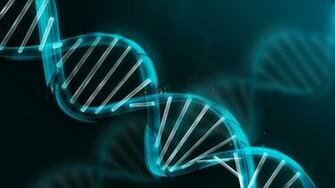 dna molecule wallpaper   HD Background