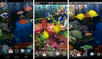 best aquarium fish live wallpapers android aquarium live wallpaper