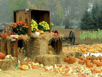 Autumn wallpaper 1600x1200 70483