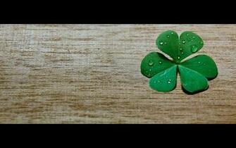 Clover Widescreen Related wallpapers HD   165203