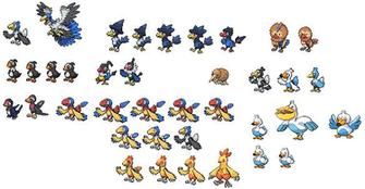Pokemon What Level Does Spearow Evolve   Hot Girls Wallpaper