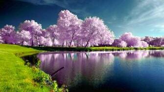 Home Nature Landscapes Desktop Wallpaper Nature Spring