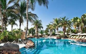 Wallpaper palm trees pool resort Palma de Mallorca Baleares