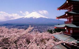 Cherry blossoms and mount Fuji   Japan wallpaper 2560x1600 987