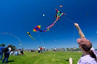 Kite Flying wallpaper with HD Quality kiteFlying kiteHD kite