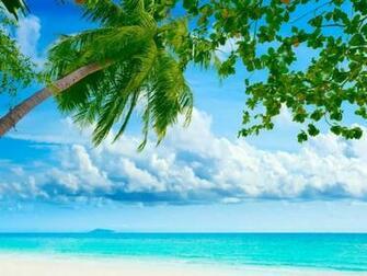 Tropical Beach Resorts wallpaper   ForWallpapercom