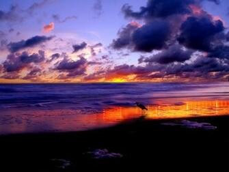 Beach sunset wallpaper desktop See To World