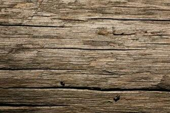 Dry Old Wood Texture Wild Textures No Bollocs Just Textures