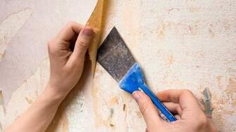 How To Remove Wallpaper Glue in 5 Simple Steps Architectural Digest
