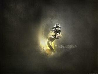 troy polamalu wallpaper pittsburgh steelers wallpaper 1024x768jpeg