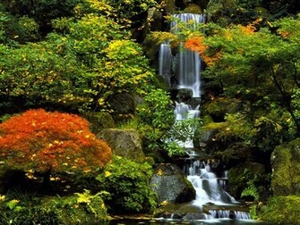 Portland images Japanese Garden HD wallpaper and background photos
