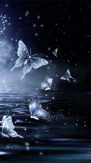 Midnight Butterfly Wallpaperby Unknown Artist whimsy in 2019