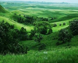 Related to wallpapers Green Nature Wallpapers   blogspotcom
