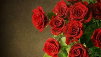 roses wallpaper and theme for Windows 10 All for Windows 10