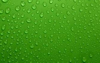 File Name 824255 Wallpapers for Green Resolution 1920x1200px