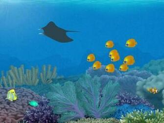 free 3d aquarium wallpapers enjoy 3d aquarium wallpapers for your