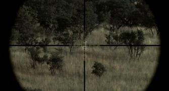 sniper riffles 1 sniper riffles 2 sniper riffles 3 sniper riffles 4