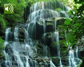 Moving Waterfalls Screensavers with Sound