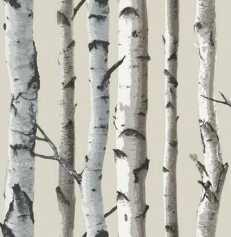 birch tree wallpaper fd31051 8 99 fine decor wallcoverings birch