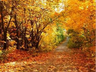 Beautiful Autumn Scenery Wallpapers Beautiful Autumn Scenery