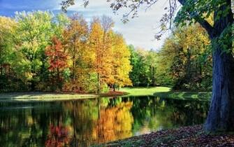 Beautiful fall Widescreen Wallpaper   10399