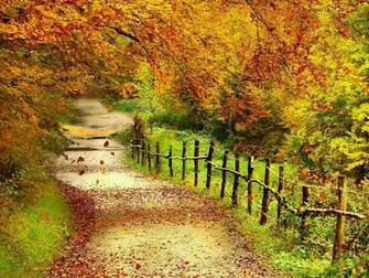 Tag Beautiful Autumn Scenery Wallpapers Backgrounds Photos Images