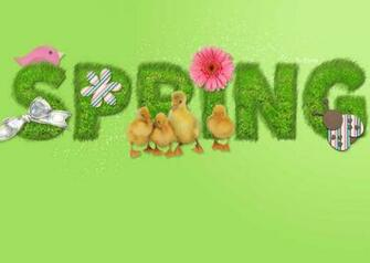 Spring Wallpaper Animals Great World
