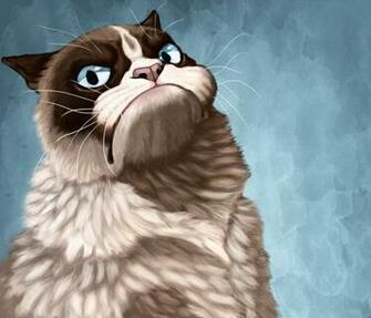Funny Grumpy Cat Quotes