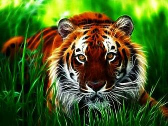 Tiger 3D Wallpapers Images Photos Pictures and Backgrounds for