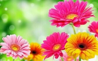 3D Spring Flower   screenshot