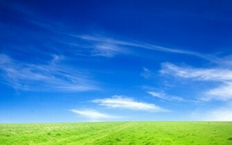 Blue Sky and Green Grass Wallpapers HD Wallpapers