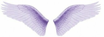 Angel wingsangel wing tattoosangel wingpictures of wingspictures